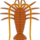 Lobster Vector Clipart