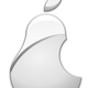 Silver Pear Vector File