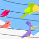 Song Birds Cartoon Vector Art