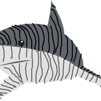 Tiger Shark Vector Clipart