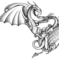 Two Dragons in Battle vector file