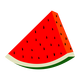 Watermelon vector clipart